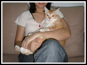 Photo dated on 29 Sept 2008, 2 weeks after her 1st Gotcha Day