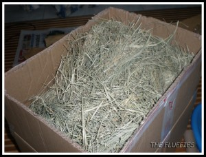 A box of 2kg Bermuda grass