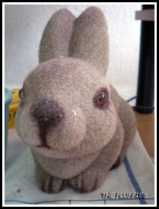 This is the 'bunny'-bank for The Fluffies