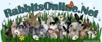 Rabbits Online